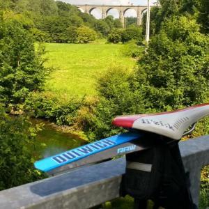 Dulwich SaddleFlap and a Viaduct